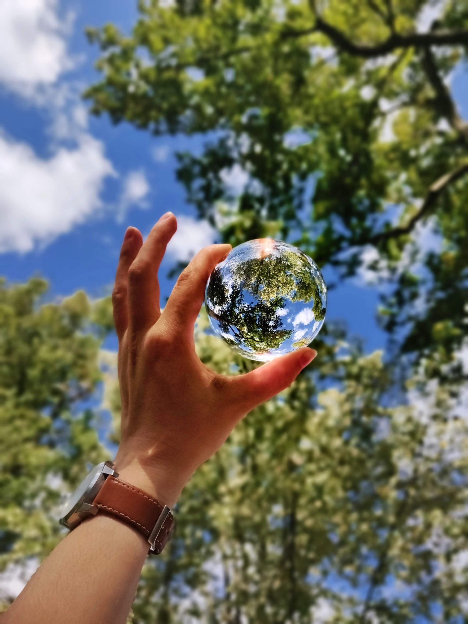 sostenibilità perpranzo