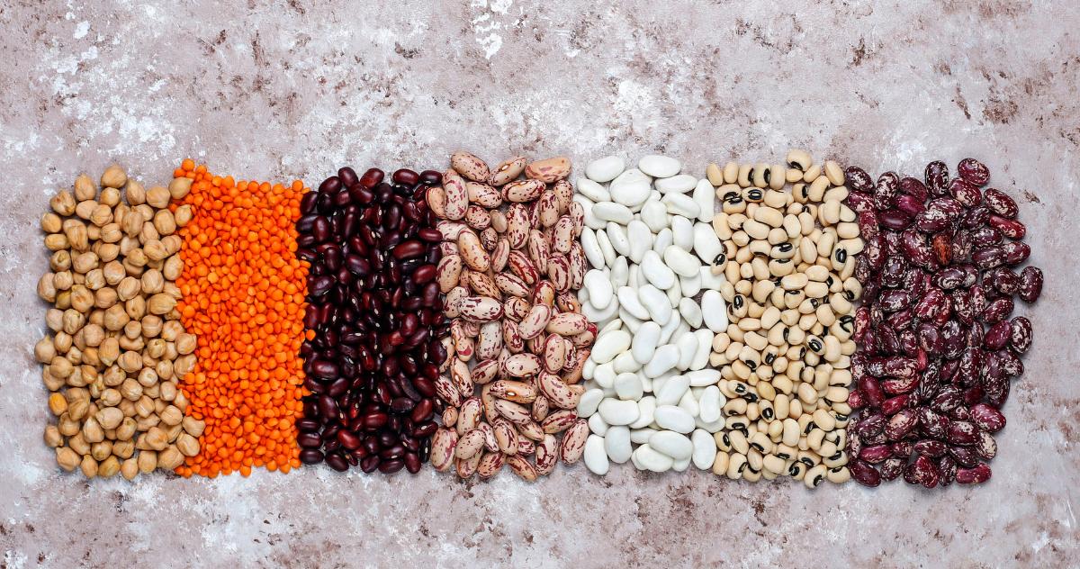 falsi miti sulle proteine